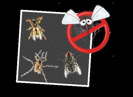 Insektenschutz - leicht gemacht!