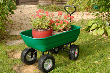 Garten Gartenarbeit ohne Rückenschmerzen