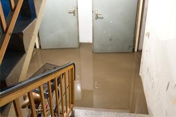 Hochwasserschäden behandeln - MELLERUD Dekontaminator