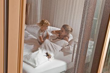 Wohnen Schieben Sie der Insektenplage einen Riegel vor!