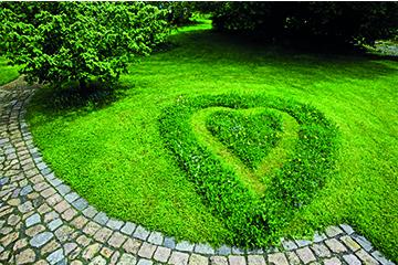 Garten Rasenmäher - eine Entscheidungshilfe für den Kauf!