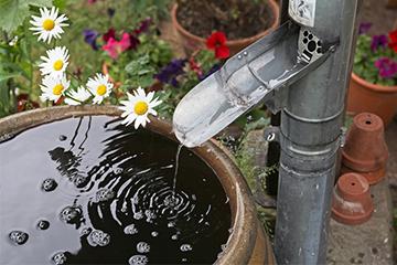 Garten Kostenloses Regenwasser nutzen
