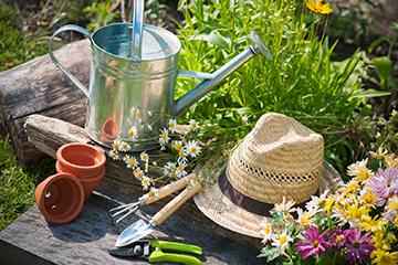 Garten Pflegetipps für Ihren Garten