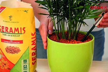 Seramis - Gibt Pflanzen neue Energie!