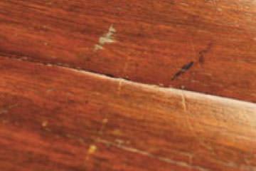 Holzreparatur - Erste Hilfe für Ihr Holz