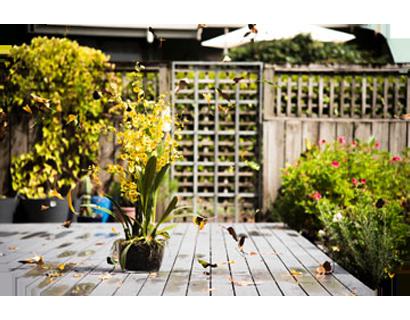 Höchste Zeit Ihre Pflanzen zu schützen