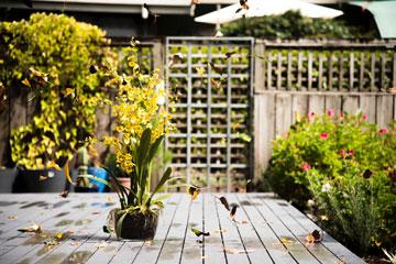 Garten Garten winterfest machen - Ihre Checkliste für den Garten im Herbst